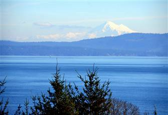 Cordova Bay Cottage with Million Dollar View