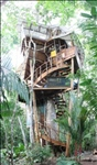 6 Levels / 3 Bedroom / 2 Bath Treehouse