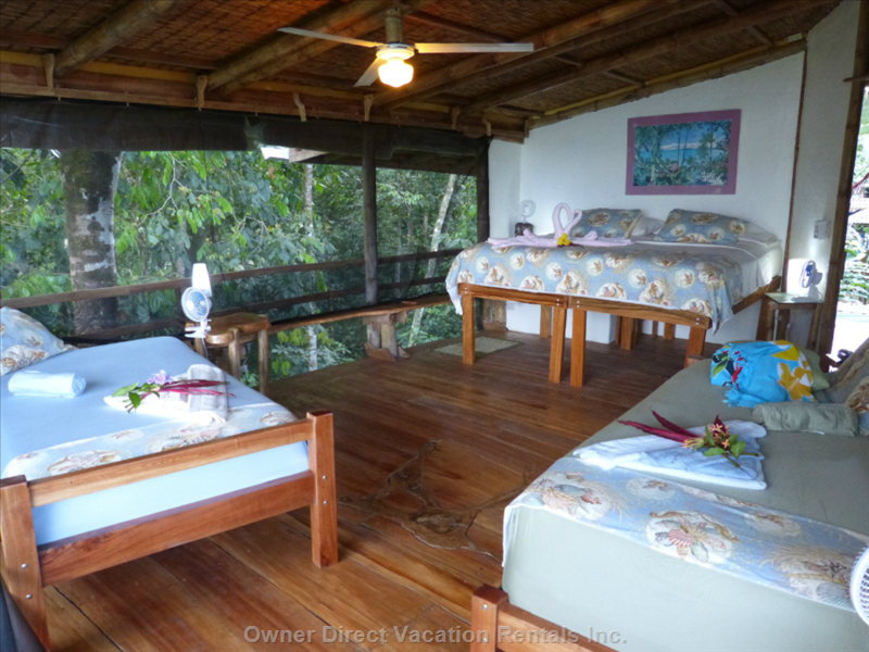 Tree House Style Third Level Brings Wildlife at Eye Level- this is the Beach Room-Ocean Views in 2 Directions