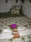 Double Bed in Tropical Room