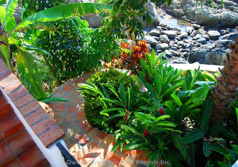 Serpentine Steps Take you down through Lush Tropical Gardens to our Cobble Stone Walk to the Private