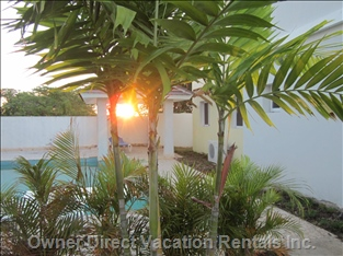 Admire the Sunrise that Can be Seen Just Outside the Villa near the Pool.