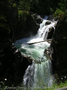 Little Qualicum River Falls  - from your Doorstep, its a lovely1km Stroll to the Beautiful Cascades of little Qualicum River Falls!  Or, you Can Stop on your Drive Home. Enjoy the many Swimming Areas of Turquoise Waters Just Steps from the Falls.   for the Nature Lover Or Hiker, the Provincial Park is a Haven of Sights & Sounds!