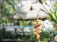 Hotel LA Palapa Ecolodge Resort - Swimming - Pool and Gardens.