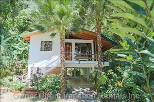 Front View of House with Palms, Bananas and Papayas. Parking for 3 Cars.