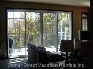 Large Patio Doors and Windows