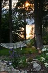 Hammock with Sunset, Front Yard