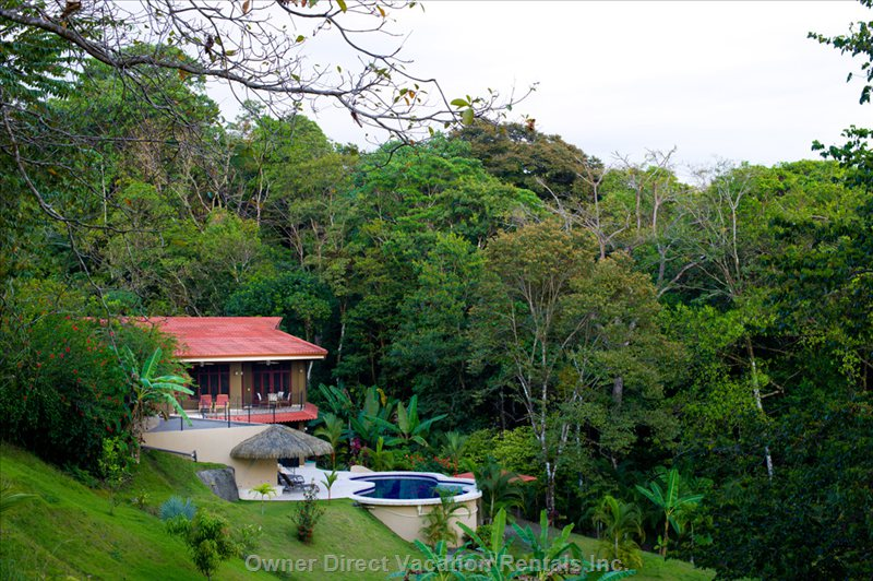Living in Nature in the Rain Forest. This Hacienda is Situated on 2.5 Acres of Tropical Gardens and Borders the National Park.