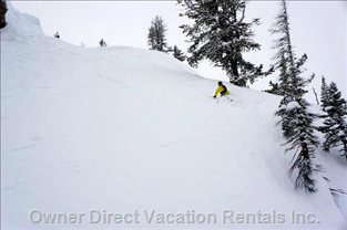 World Class Skiing at Fairmont, Panorama & Kicking Horse Ski Resorts; Heli-Skiing Available