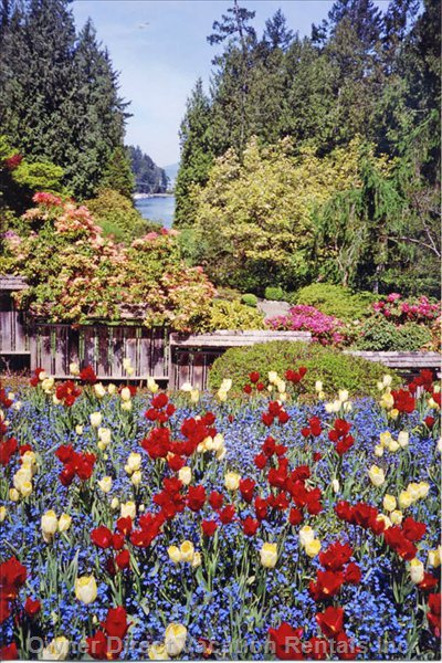 Butchart Gardens in Spring - Butchart Gardens Are a few Minutes Away.