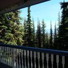 View from Deck in Summer