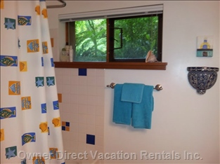 Shower/Tubs W/Windows to Outside