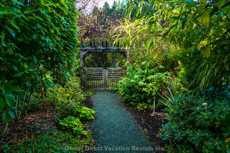 A Walk through the Arbour to the Pond and more  of our Gardens Photo Taken in the Early Evening