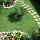Front Garden View from Balcony