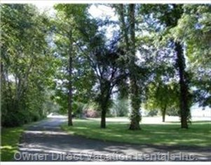 View of the Driveway Toward the Nature Trail. Great Place for Young Children to Ride their Bikes.