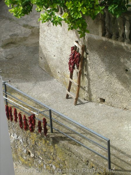 ............And Drying Chillies