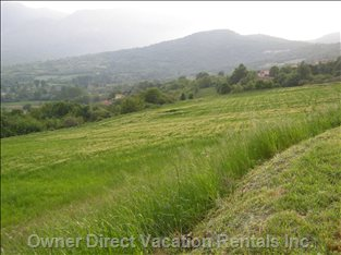 The is the View of the Surrounding 15 Acres of Agricultural Land.