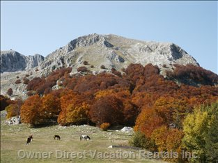 Ski Resort, Campitello Matese in the Fall
