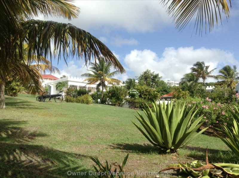 Beautiful and well Kept Lawns and Gardens