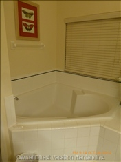 Master Bathroom Tub