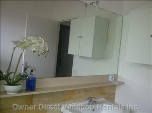 The Bathroom  - Vanitory Unit with Large Mirror above, Full Sized Bath Tub with Fixed Shower Head on the Wall
