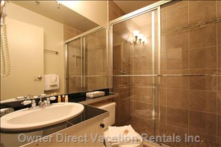 Fully Renovated Bathroom with Spacious Shower (no Tub).