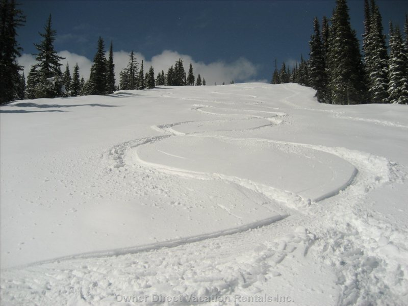 First Tracks in Powder!