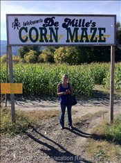 Demilles Corn Maze in Salmon Arm