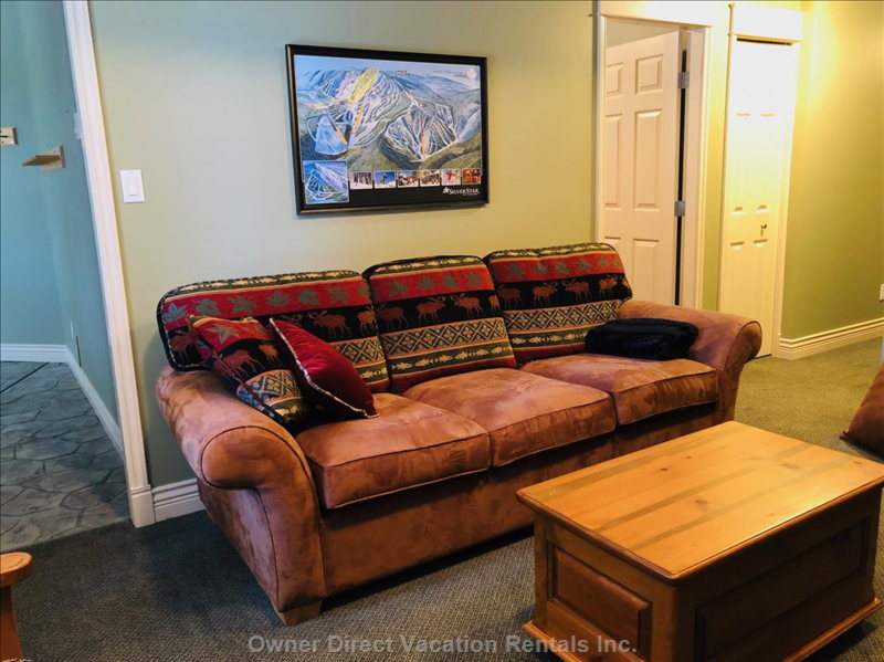 Pullout Couch in Family Room