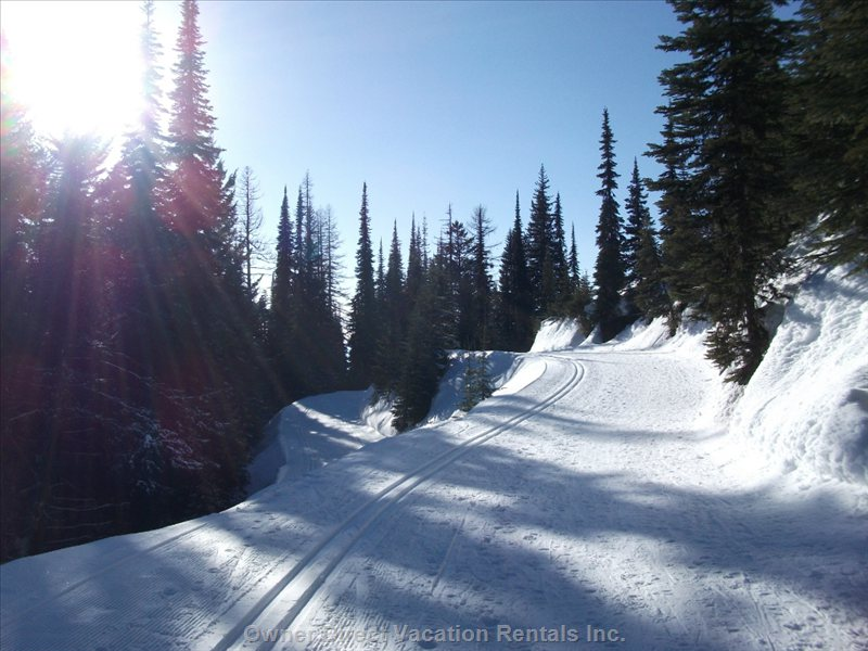 The Best X-Country Trails in the World. Our Condo is on the Trail that Connects Silverstar Mtn. To Sovereign Lake X-Country.