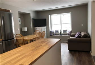 Brand New Deluxe one Bedroom Fully Equipped Condo - Sleeps 4 - Pet Friendly Too!