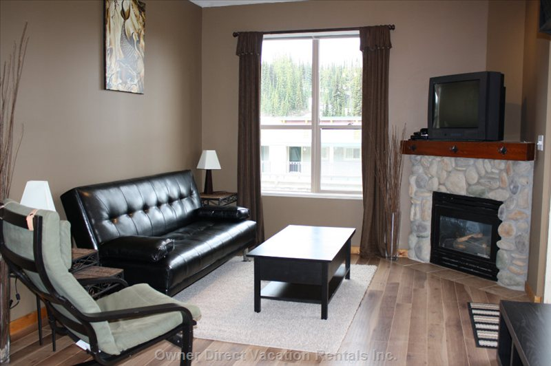 Living Room - Gas Fireplace. TV with Full Cable and DVD. Fold out Daybed.