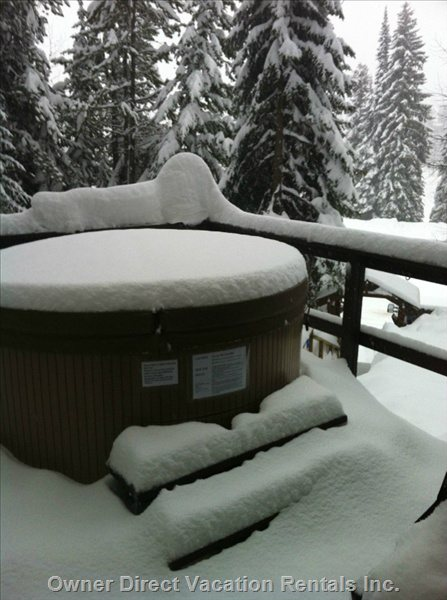Enjoy a Private Soak Surrounded by Snow Filled Trees in our Hot Tub