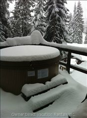Enjoy a Private Soak Surrounded by Snow Filled Trees in our Daily Maintained Hot Tub
