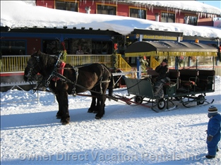 Horse Drawn Sleigh Rides in the Village