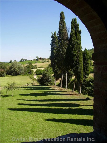 View of the Garden from the Patio