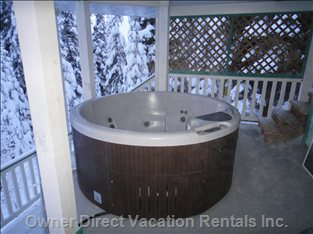 New Hot Tub for 2011