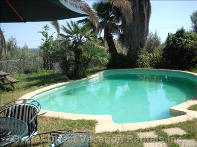 View of Pool Looking South - the Property is Located on a Hill, and There is a Panorama View from the Pool that Looks out over the Olive Trees.