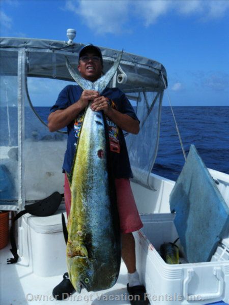 Good Fishing in Spanish Wells(57lb Mahi Mahi)