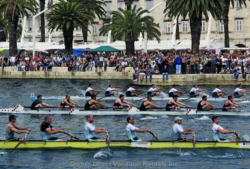 Regatta in Port of Split: Oxford - Cambridge - Split
