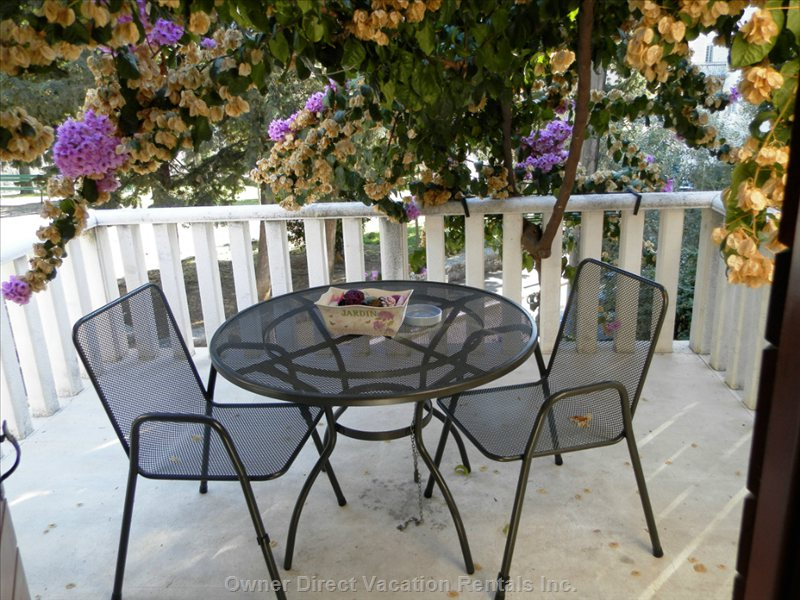 Terrace with Beautfull Bougainvillea