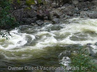 River - Sights to See on your Way to Tofino
