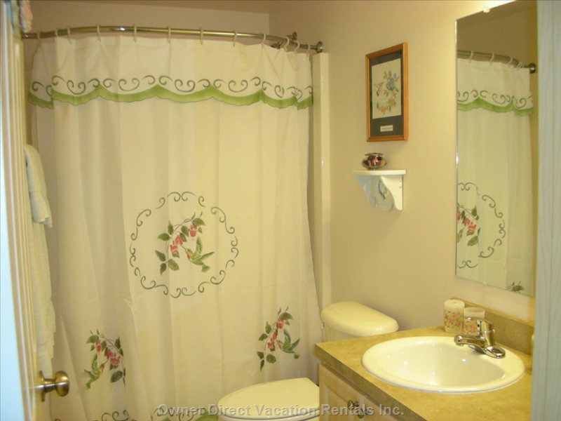 Bathroom - this Bathroom is Decorated with Humming Birds. has a Curved Shower Curtain Rod, High End Fluffy Towels and Washcloths.