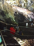 Algar Do Cavao,  the inside of a Volcano Provides a Surreal Experience.  Take a Tour.