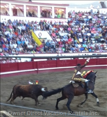 Spanish Style Bull Fights Draw Great Crowds and Heart Pounding Entertainment.