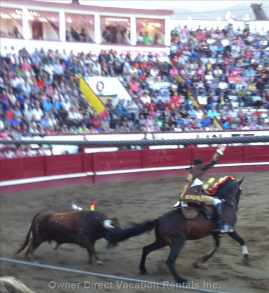 Arena Bull Fighting Comes to the Island for the Larger Festivals.