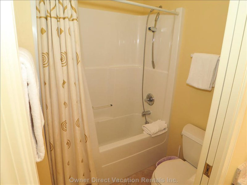 Master Ensuite Bath Tub and Shower