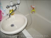 Well Maintained Bathroom with Tab