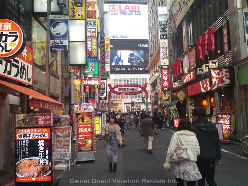 Shinjuku City (10 Minutes by Train)