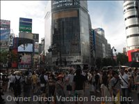 Shibuya Shoping District (15 Minutes by Bus, Taxi Or Train)